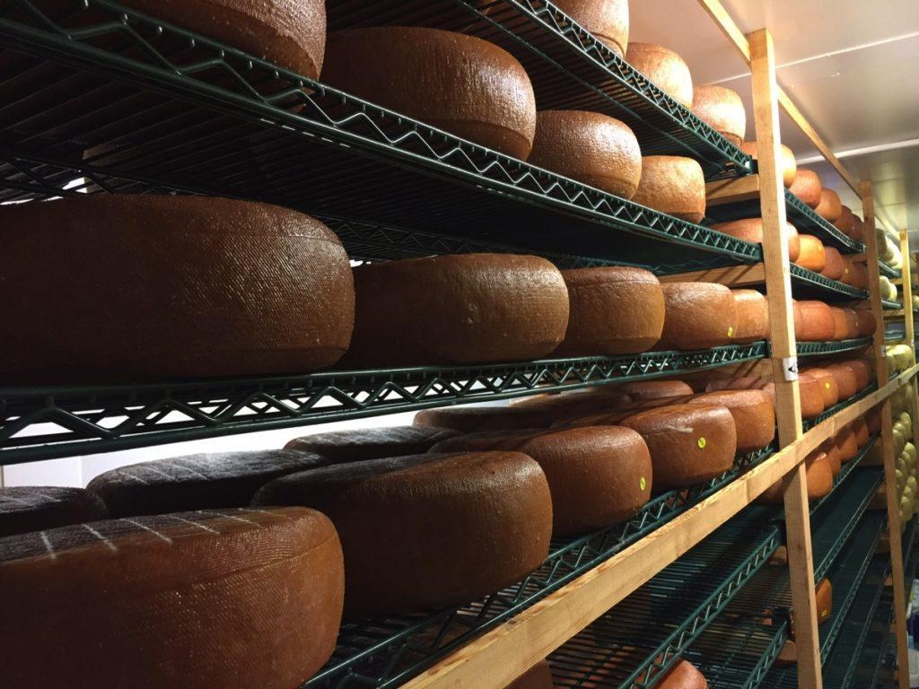 Award winning Cheese